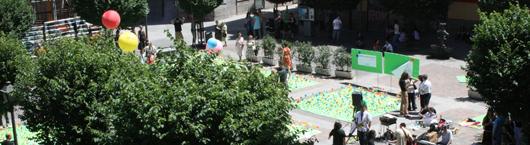 plantacion de flores en la plaza san ildefonso