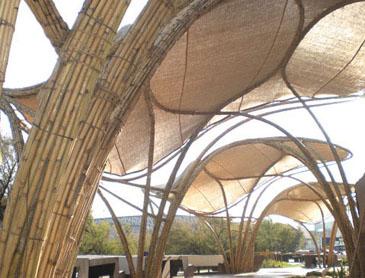 Estructura ecosistema urbano for Estructura arquitectura
