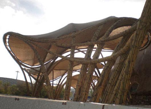 Estructuras vegetales arquitectura org nica ecosistema for Estructura arquitectura