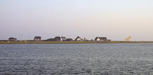Torre de Observación de Aves - GMP Architekten6