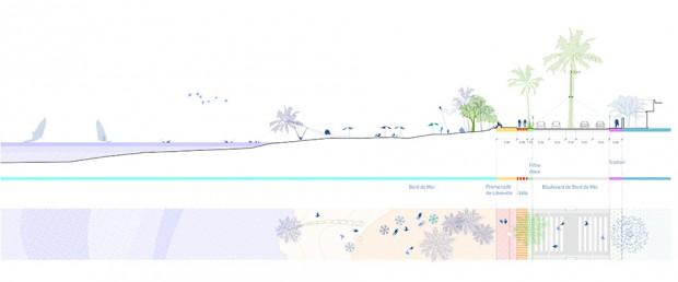 Section through the beach