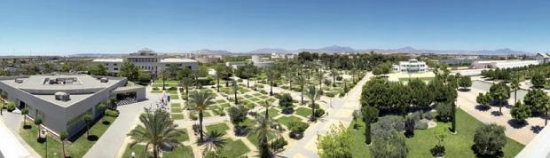 University of Alicante