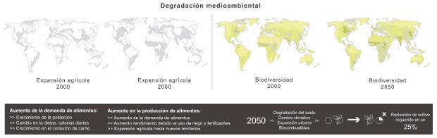 Degradación medioambiental