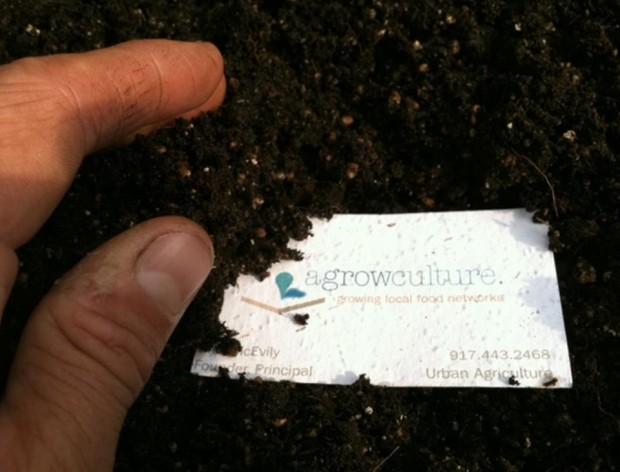 "Tarjetas ""plantables"" - Fuente: Agrowculture"